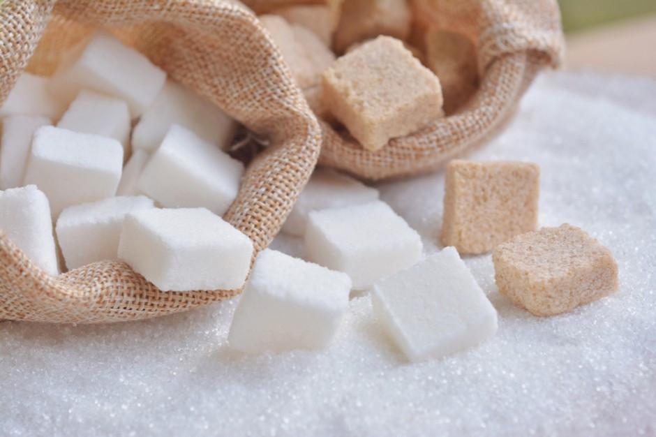 Producenci i przetwórcy apelują do premiera ws podatku od cukru
