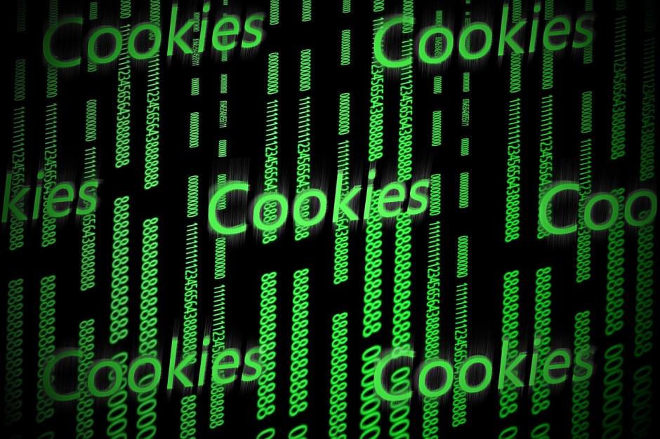 W ciągu dwóch lat nastanie internet bez plików cookies