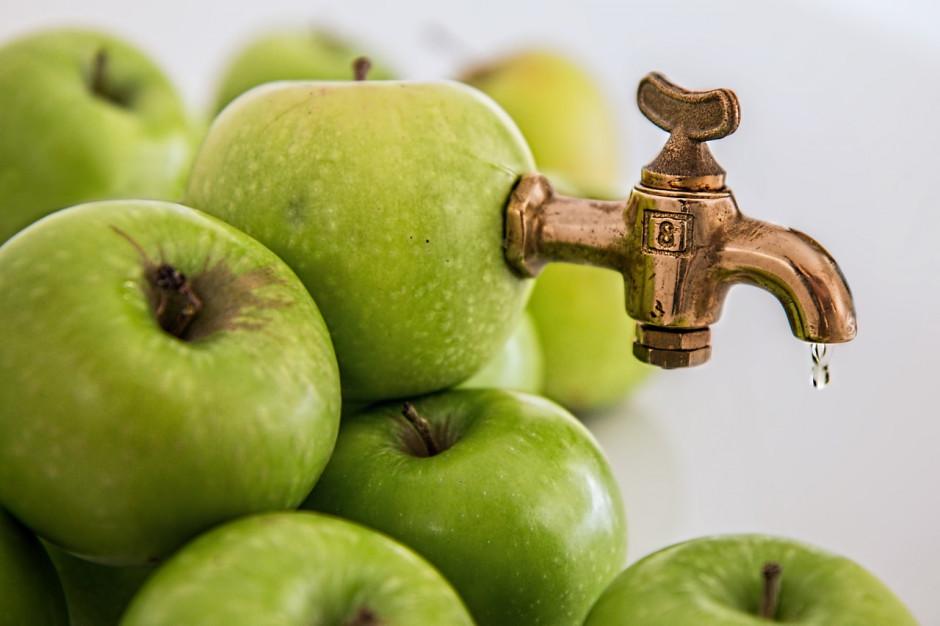 Polski eksport koncentratu soku jabłkowego większy niż szacował resort finansów