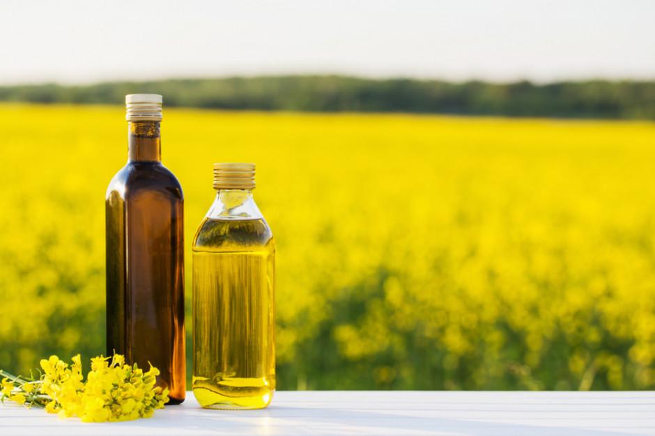 PSPO: Sektor olejarski wzmocnił swoją pozycję w przemyśle rolno-spożywczym
