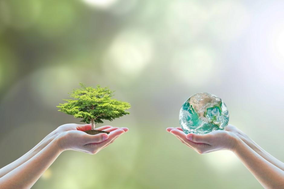 Raport: Inicjatywy ekologiczne mogą przynieść firmom korzyści finansowe