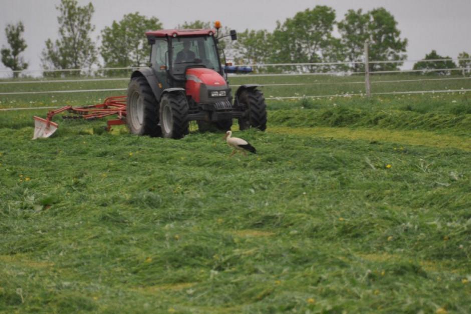 Śląskie najbezpieczniejszym regionem pracy rolniczej w kraju