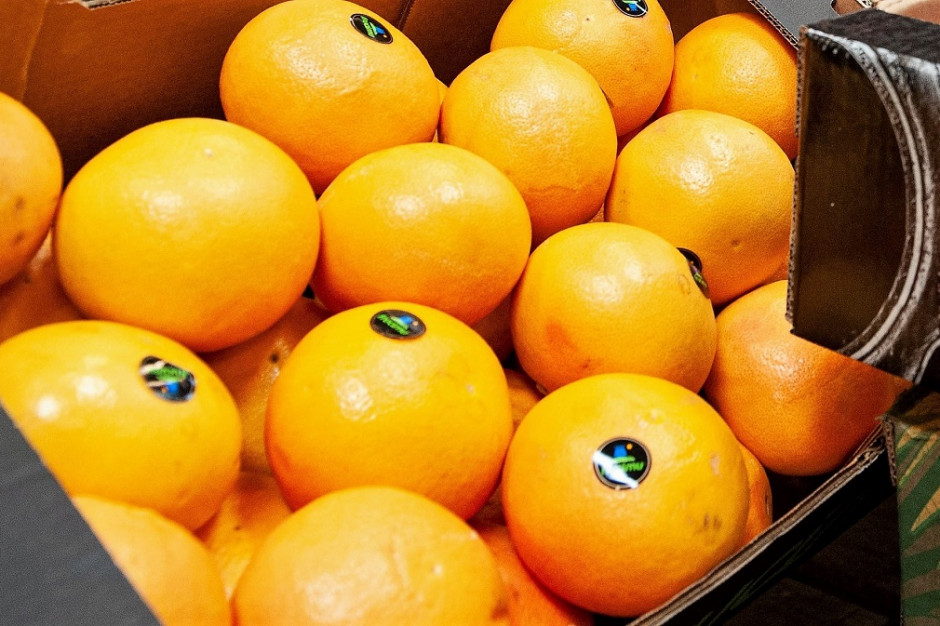 Analiza: Ceny pomarańczy i jabłek spadają. Reszta owoców zdrożała - najbardziej grejpfruty i banany
