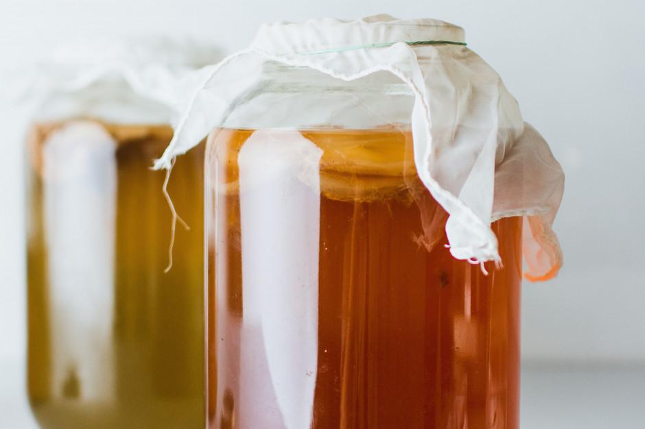 Zastosowanie naparu herbacianego Kombucha i kultury symbiotycznej Scoby do produkcji fermentowanego napoju mlecznego