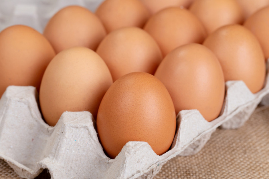 Grupa Metro podpisała globalną deklarację o wycofaniu jaj z chowu klatkowego