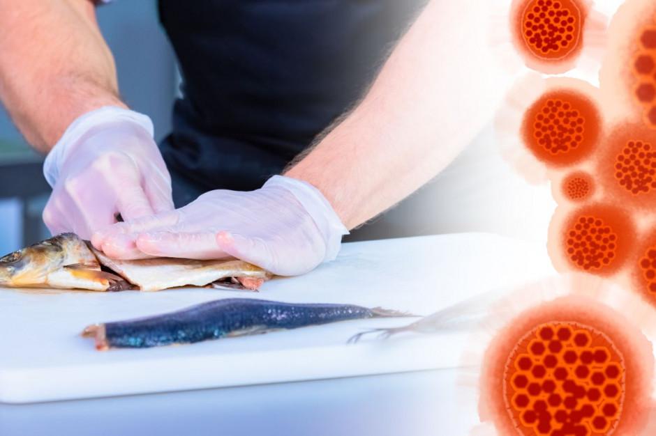 GIS: nie ma dowodów, aby żywność była źródłem lub ogniwem transmisji koronawirusa