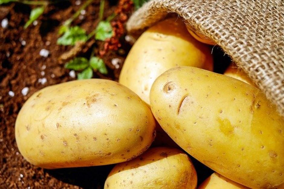 Wyższe ceny ziemniaków z powodu koronawirusa