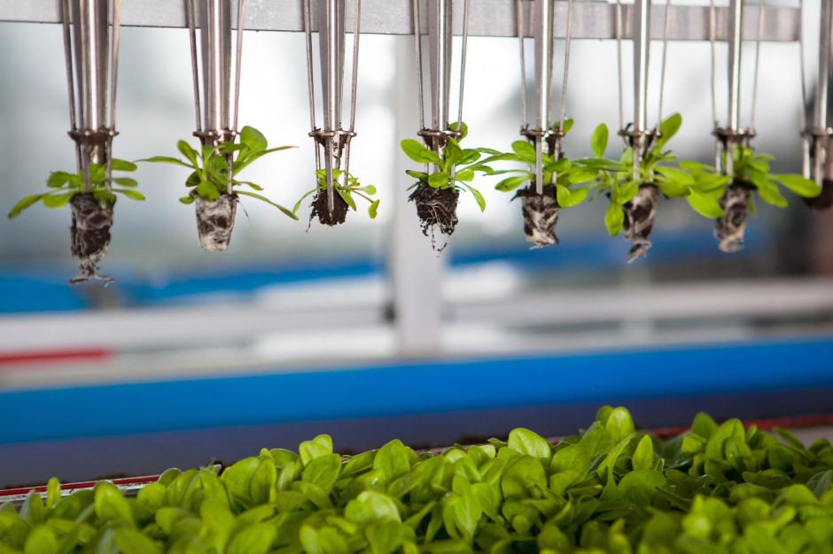 EIT Food rekrutuje na programy dla przedsiębiorców