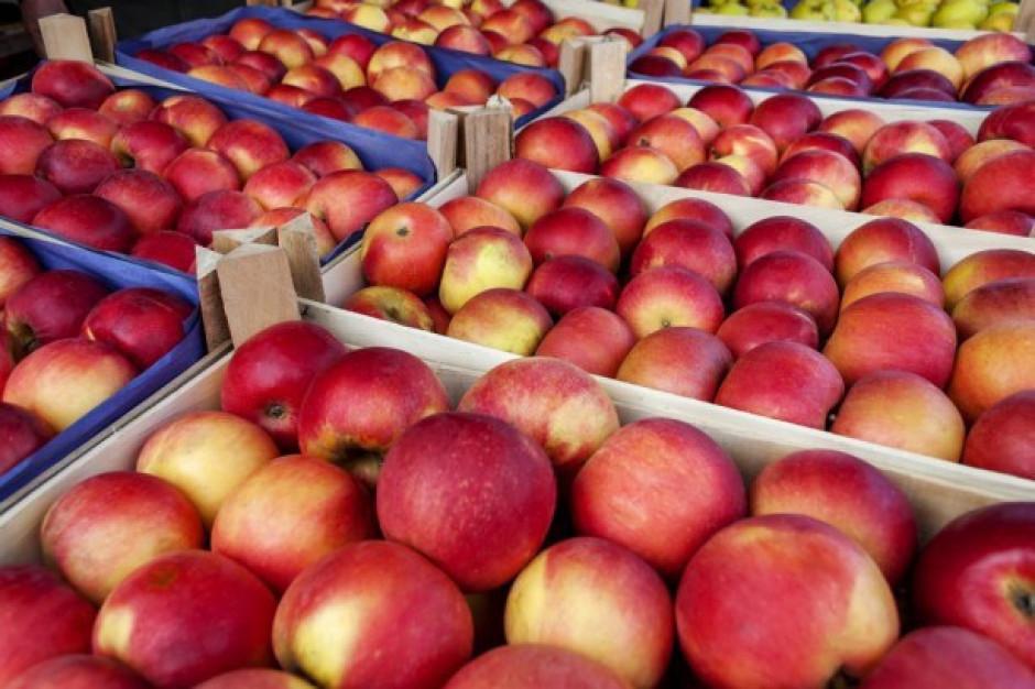 Wyższe ceny jabłek deserowych