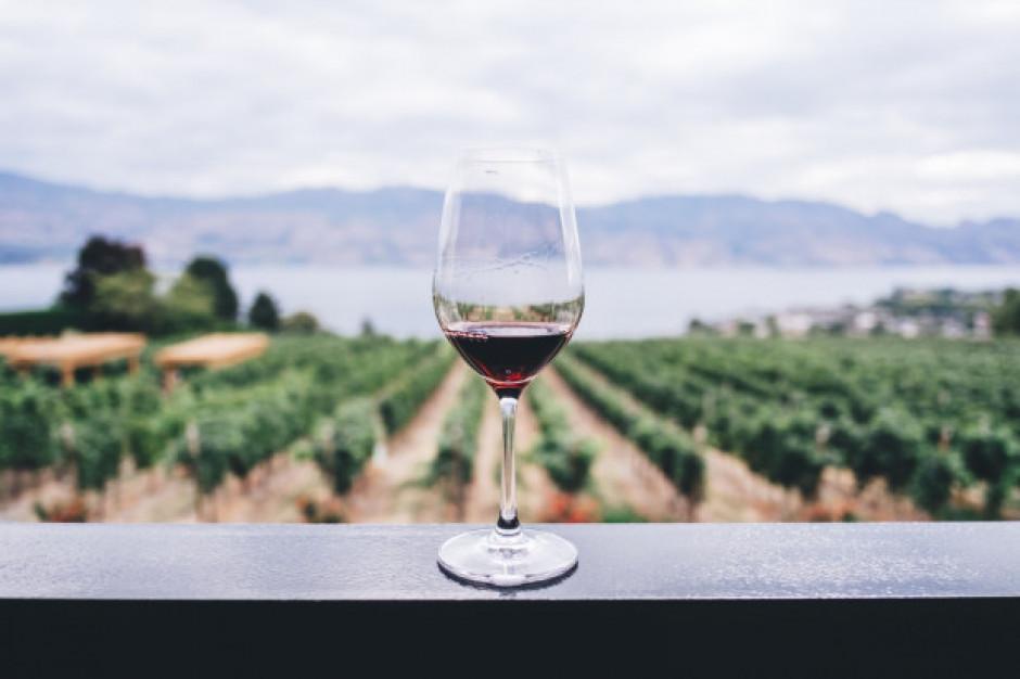Unijni plantatorzy winorośli oczekują wsparcia od Komisji Europejskiej