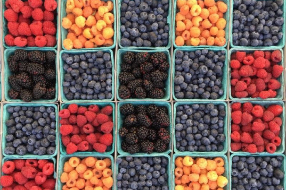 Udany początek sezonu polskich owoców jagodowych