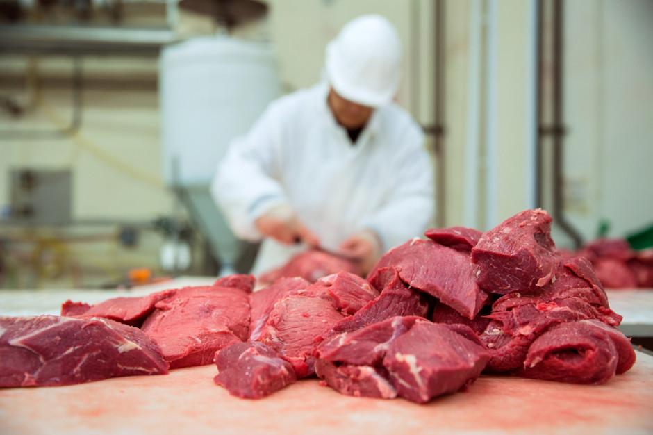 Animex: Koronawirus w zakładzie mięsnym w Starachowicach