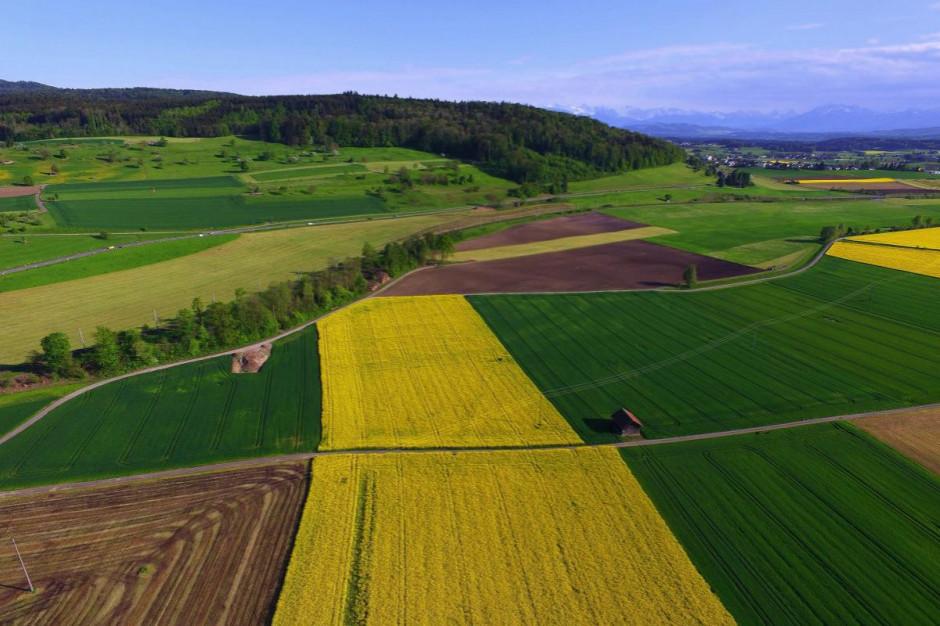 KE wskazuje ekologiczny kierunek produkcji żywności i rolnictwa w UE
