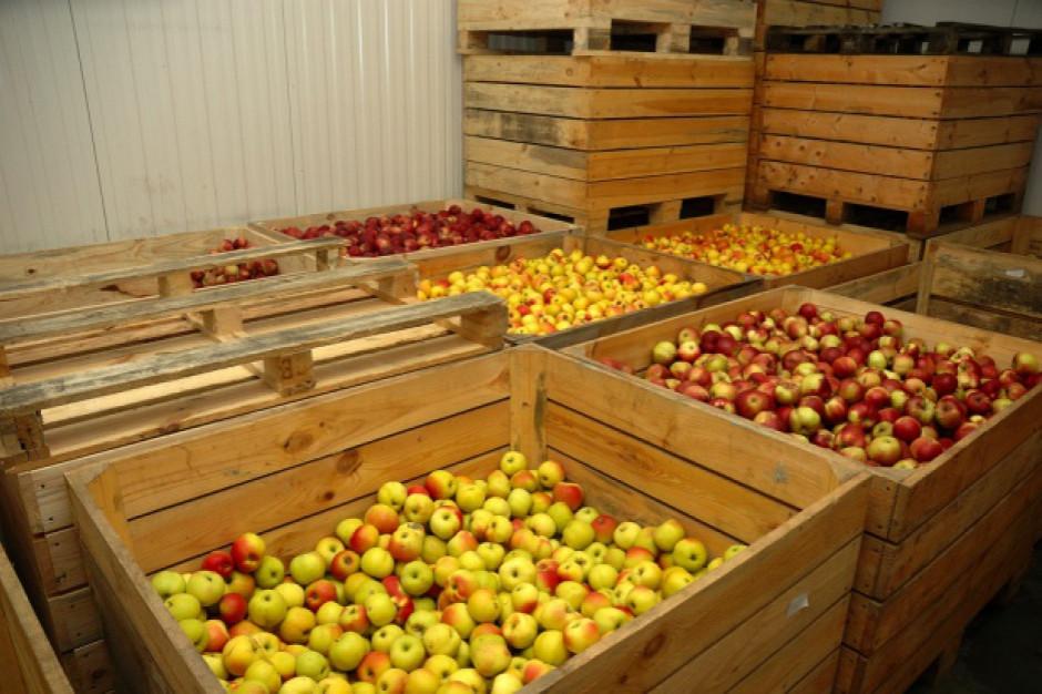 Stowarzyszenie Unia Owocowa: bariery w sektorze owocowo-warzywnym