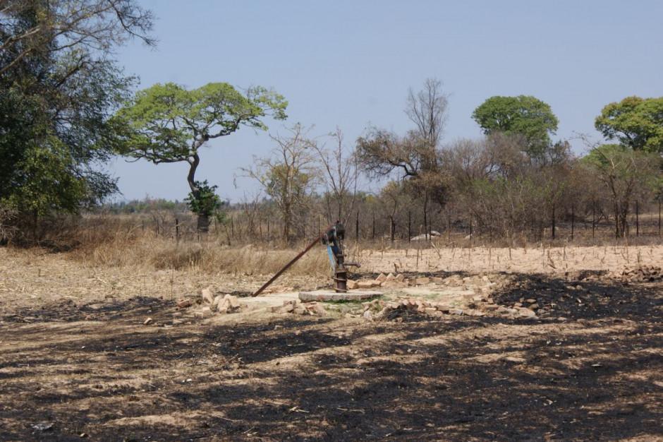 Afryka pierwsza mierzy się ze skutkami kryzysu klimatycznego. PKB może spaść o połowę