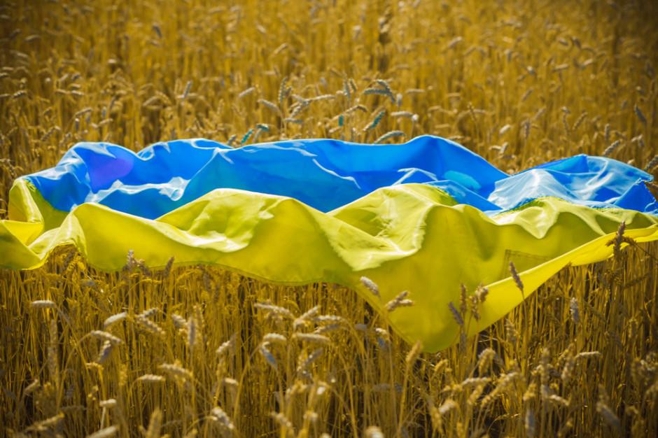 Ukraińcy powoli wracają