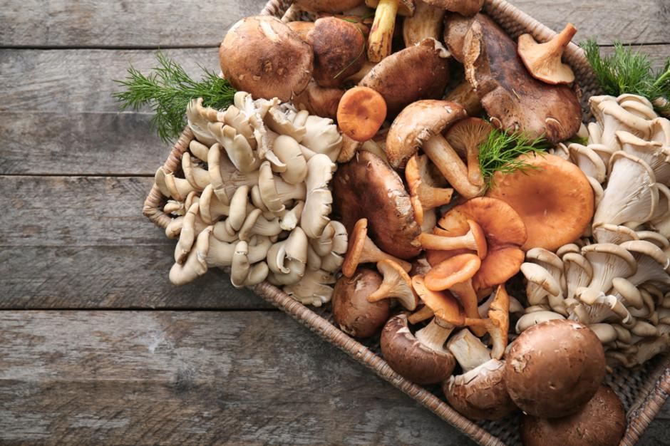 Ministerstwo Zdrowia umożliwi produkcję mieszanek suszonych grzybów z różnych gatunków