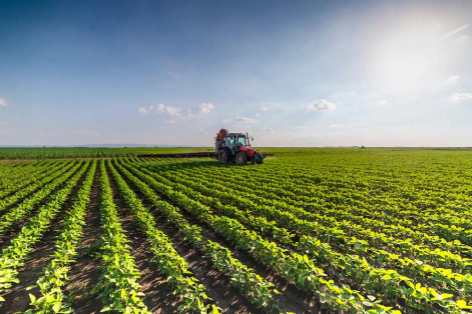 Prezes KSG Agro: ponowne powołanie resortu rolnictwa na Ukrainie może mieć pozytywne skutki