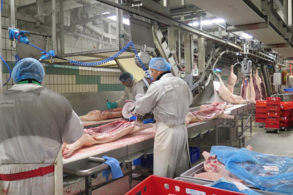 Ognisko koronawirusa w niemieckich zakładach mięsnych