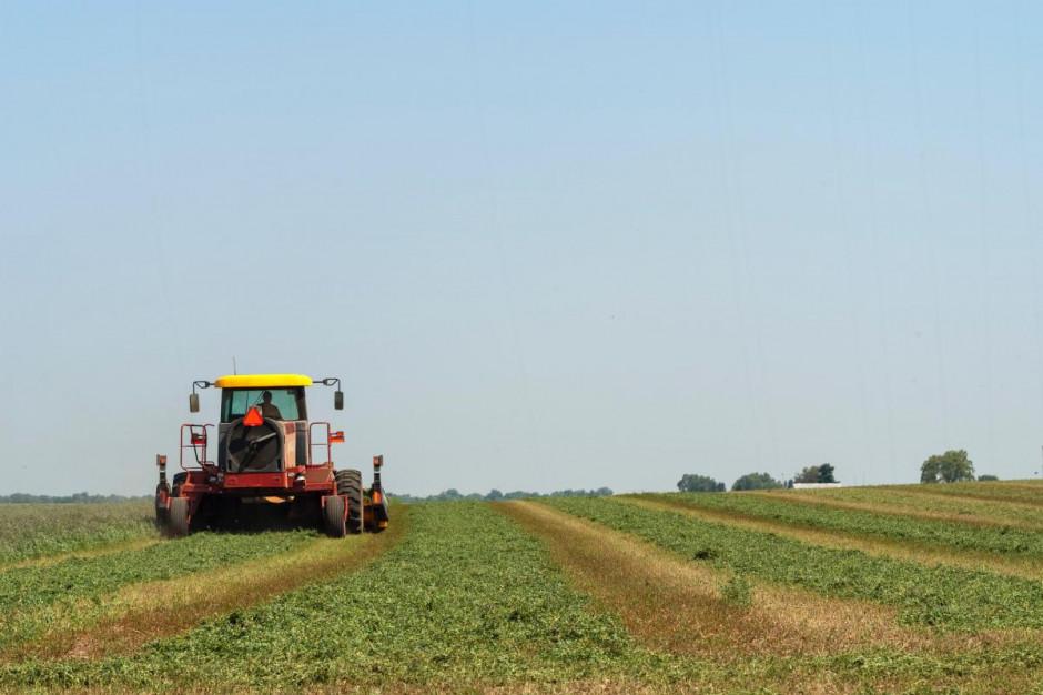 Projekt wydłużający zasiłek opiekuńczy dla rolników trafił do prac rządowych
