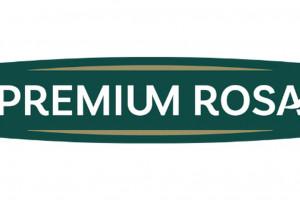 Zdjęcie numer 1 - galeria: Premium Rosa w nowej odsłonie