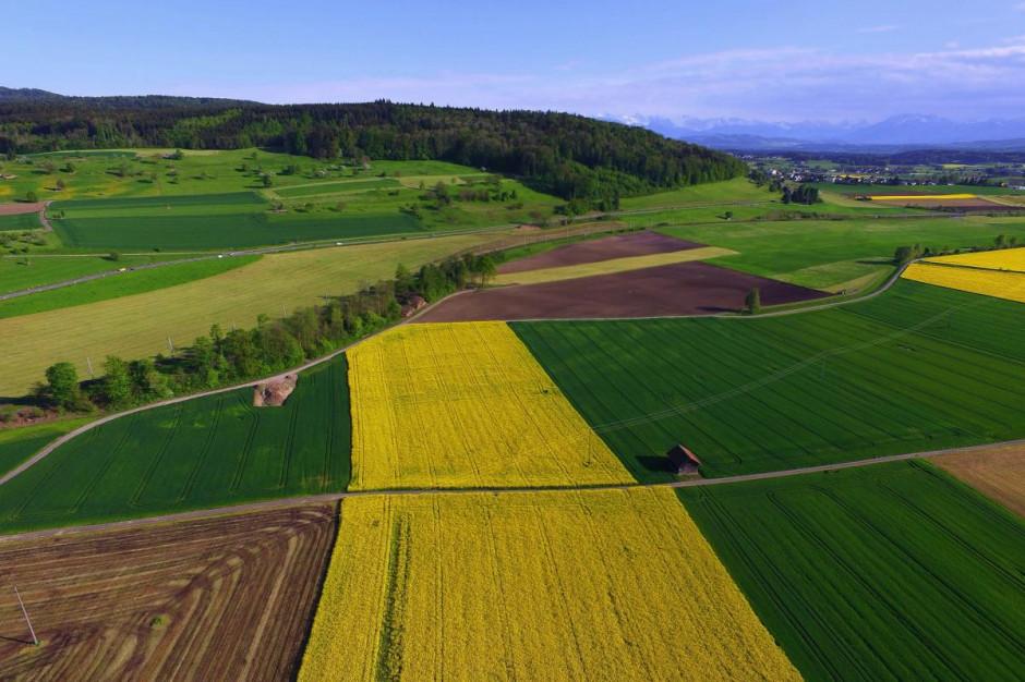 PFR: producenci rolni mogą się ubiegać o pomoc przekraczającą limity
