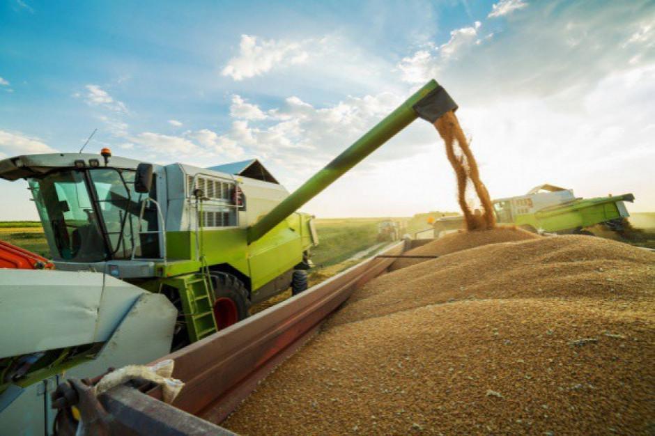 Na Ukrainie zebrano ponad 20 mln ton zbóż