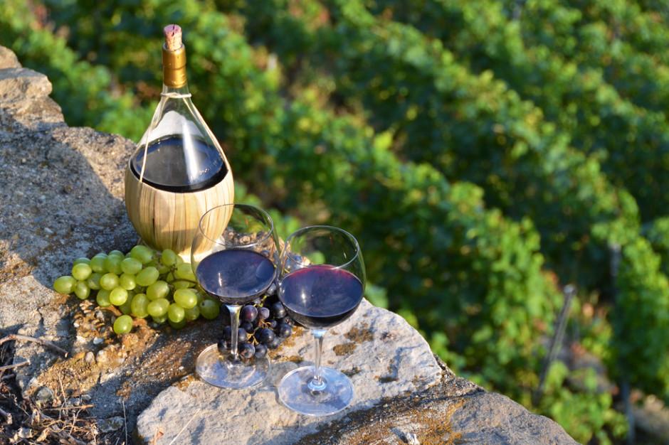 Francja zwiększa państwową pomoc dla branży winiarskiej