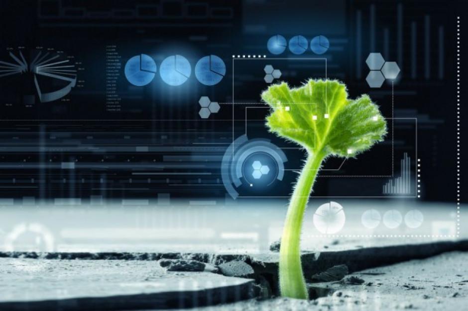 Firmy mogą się starać o 100 mln zł z UE na nowe technologie w rolnictwie