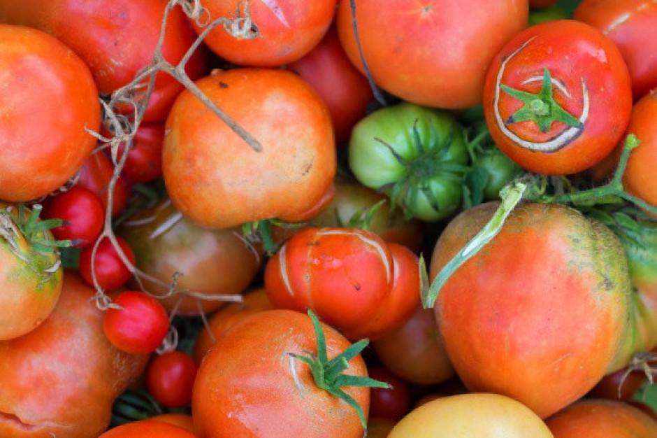 USA: wzrosło zainteresowanie nieperfekcyjnymi warzywami i owocami