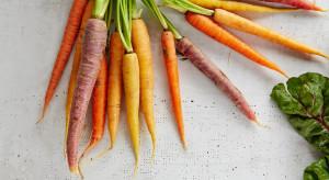 Marchewka i ziemniaki to warzywa najchętniej jedzone przez dzieci, a z owoców jabłko (badanie)
