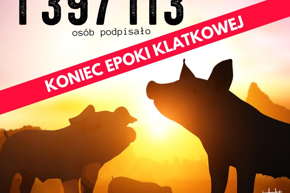 CIWF zebrała 1,4 mln podpisów pod zakazem hodowli zwierząt w klatkach