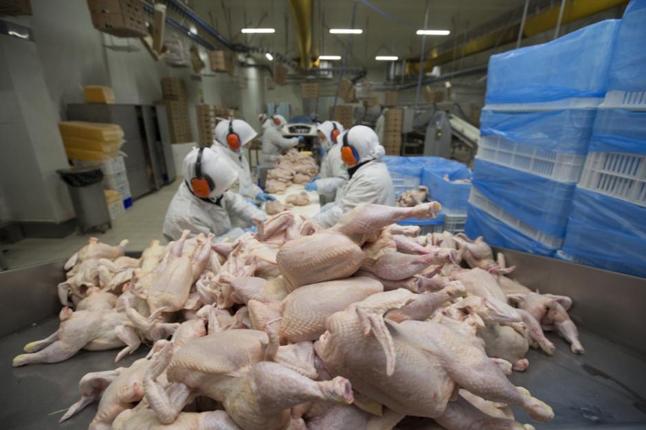 Minister rolnictwa: poprawki do ustawy o ochronie zwierząt odpowiadają na postulaty rolników