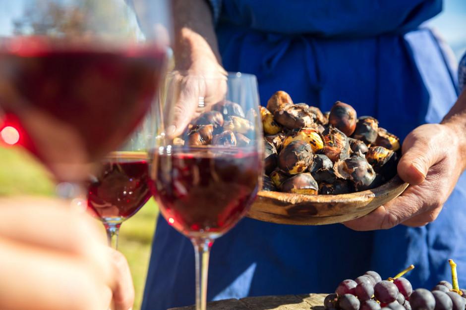 W południowym Tyrolu, we Włoszech, trwa sezon na młode wino