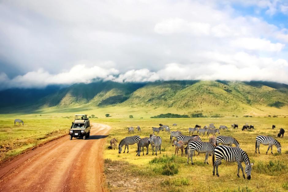 Tanzania: Kurczący się areał ziemi rolnej szansą dla polskich eksporterów?