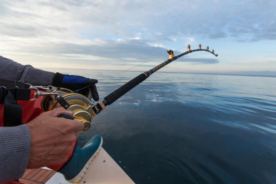 KE proponuje kwoty połowów na Atlantyku i Morzu Północnym na 2021 r.