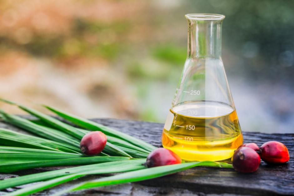 PKZOP o tym jak polscy producenci żywności i handel mogą przestawić się na użycie certyfikowanego oleju palmowego