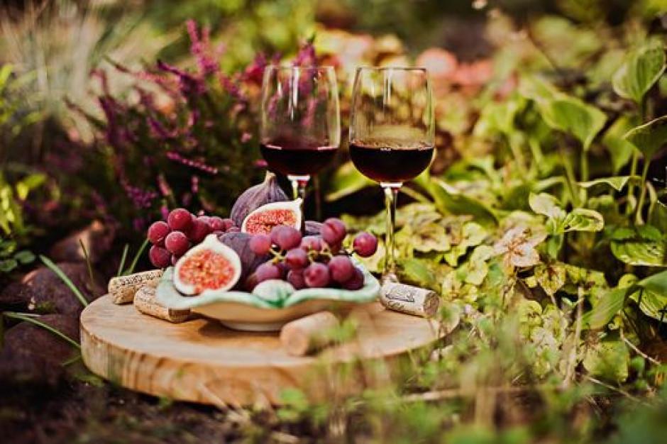 Kondrat Wina Wybrane: Polskie wina fenomenem na skalę światową