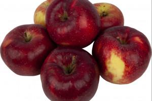 Lidl ze specjalną promocją na jabłka XXL