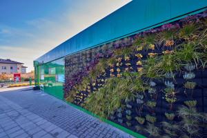 Zdjęcie numer 7 - galeria: Żabka otworzyła sklep zasilany w stu procentach zieloną energią (galeria zdjęć i wideo)