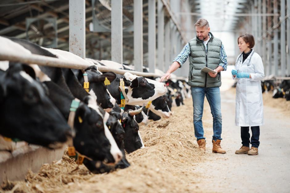Sejm przyjął poprawki Senatu do ustawy ws. organizacji hodowli zwierząt