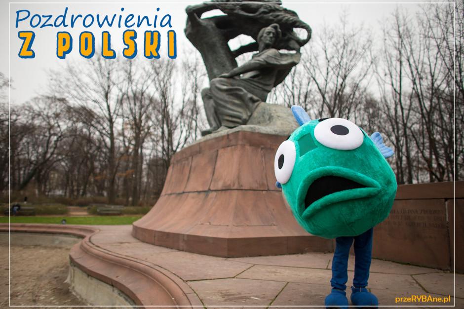 Compassion Polska domaga się intensywnych kontroli w miejscach sprzedaży żywych karpi