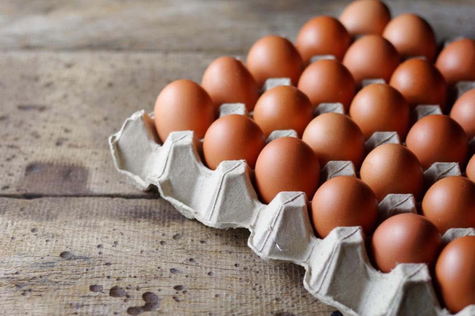 KIPDiP: Grypa ptaków nie wpłynie na wzrost cen jaj w sklepach