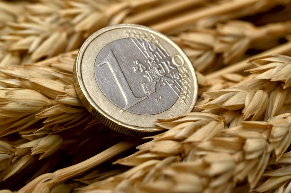 Cena pszenicy oscyluje wokół 1000 zł za tonę