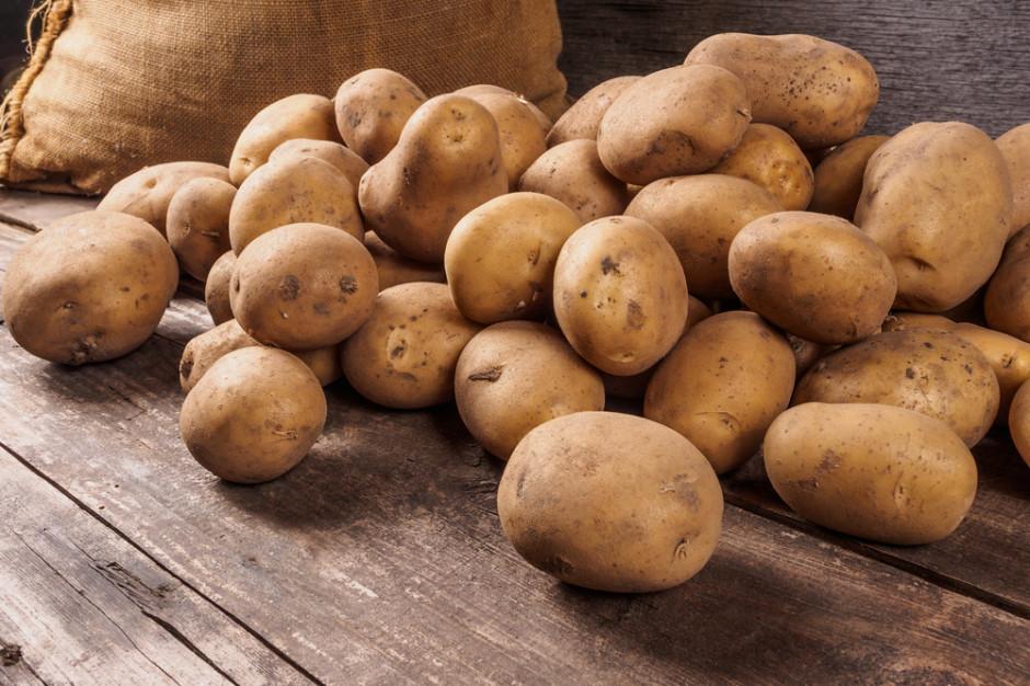 Lidl obniża cenę ziemniaków z jesiennych zbiorów od polskich rolników