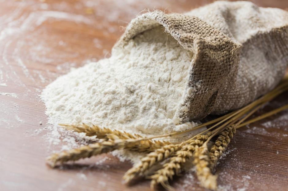 Szef MRiRW podpisał dokumenty dot. eksportu m.in. mąki do Chin