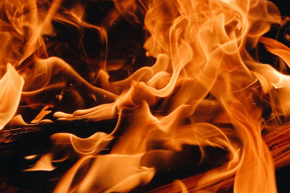 Pożar Lidla opanowany, zapadł się dach w części magazynowej