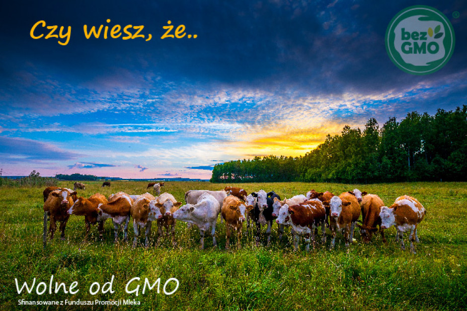 Produkty bez GMO zyskują coraz większą popularność