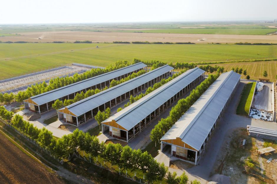 IERiGŻ: Duże gospodarstwa bardziej przyjazne środowisku