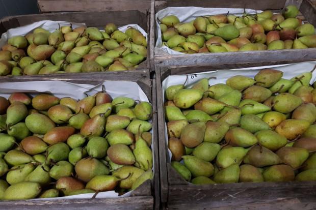 Mroźna pogoda utrudnia obrót owocami i warzywami na rynkach hurtowych
